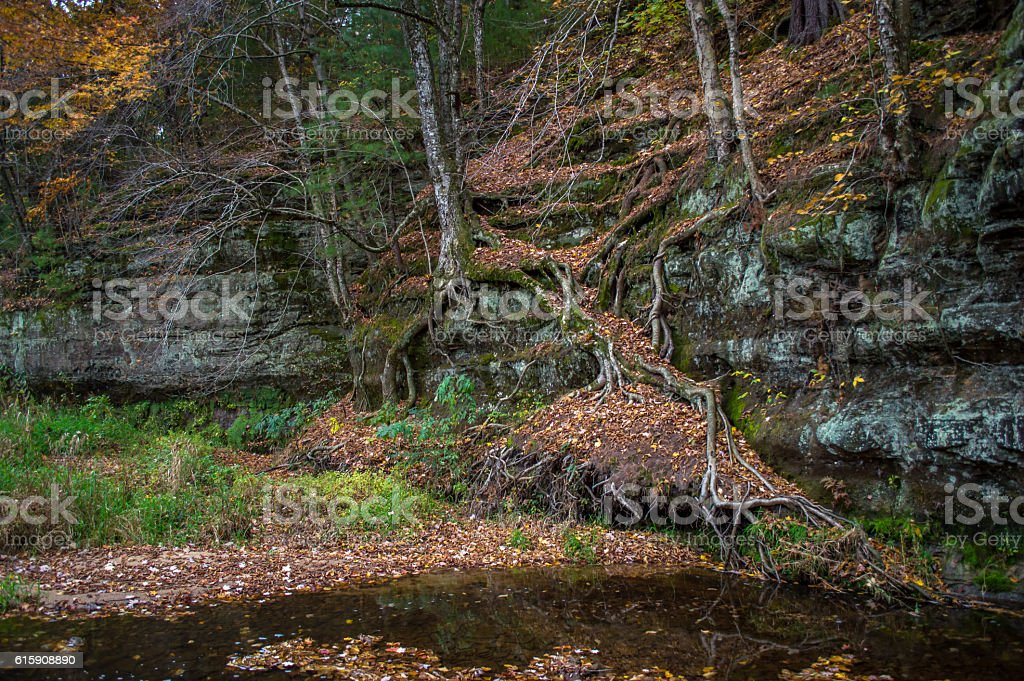 Fall Cliff Side stock photo