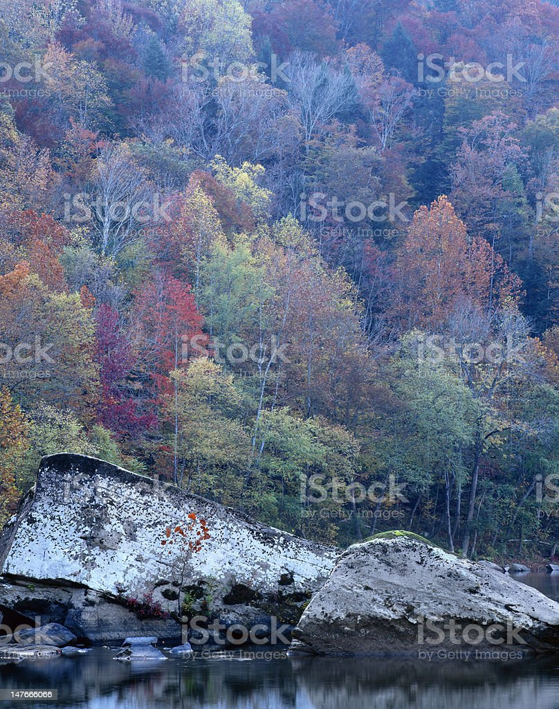 Fall color along the Big South Fork River stock photo