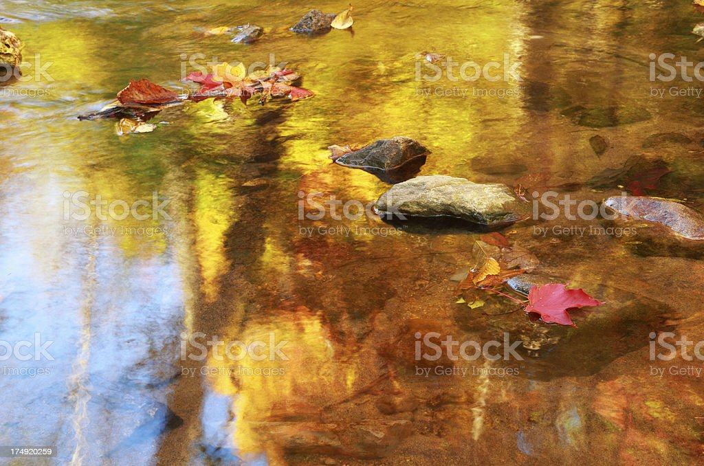 Fall Color in Stream stock photo
