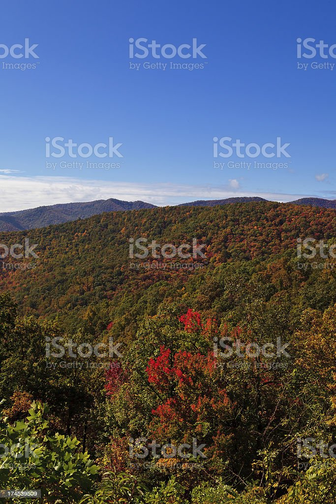 Fall Color in the Mountains royalty-free stock photo