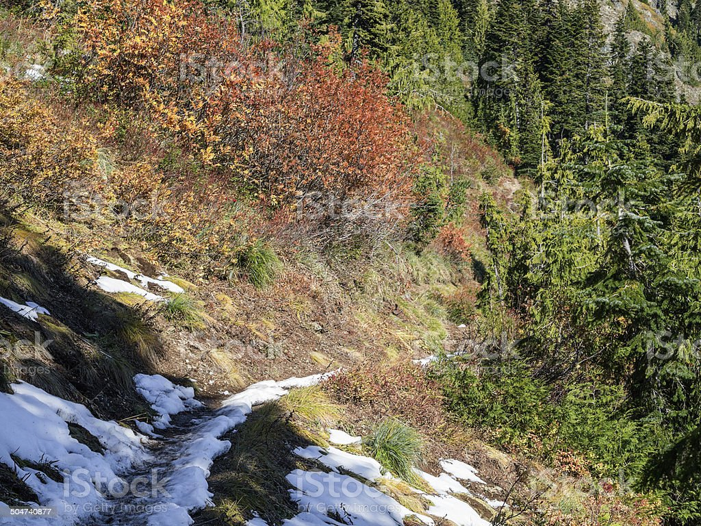 Fall Color on the Pacific Crest Trail stock photo