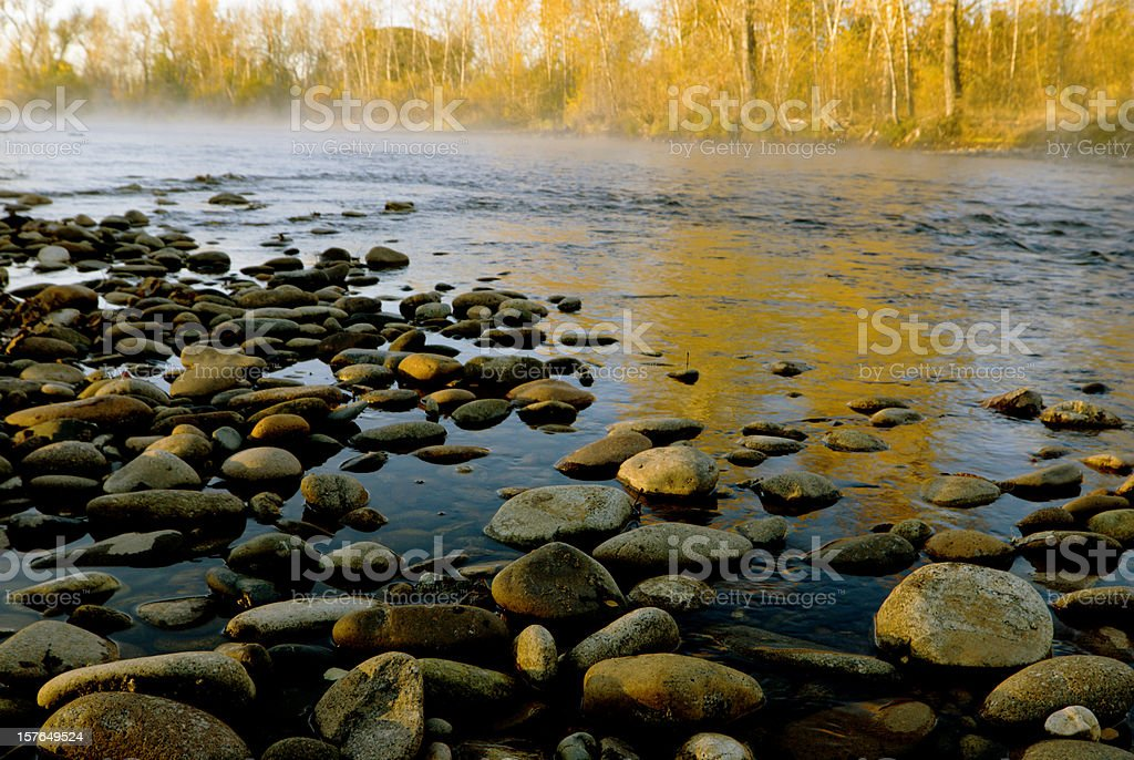 Fall colors along Boise River royalty-free stock photo