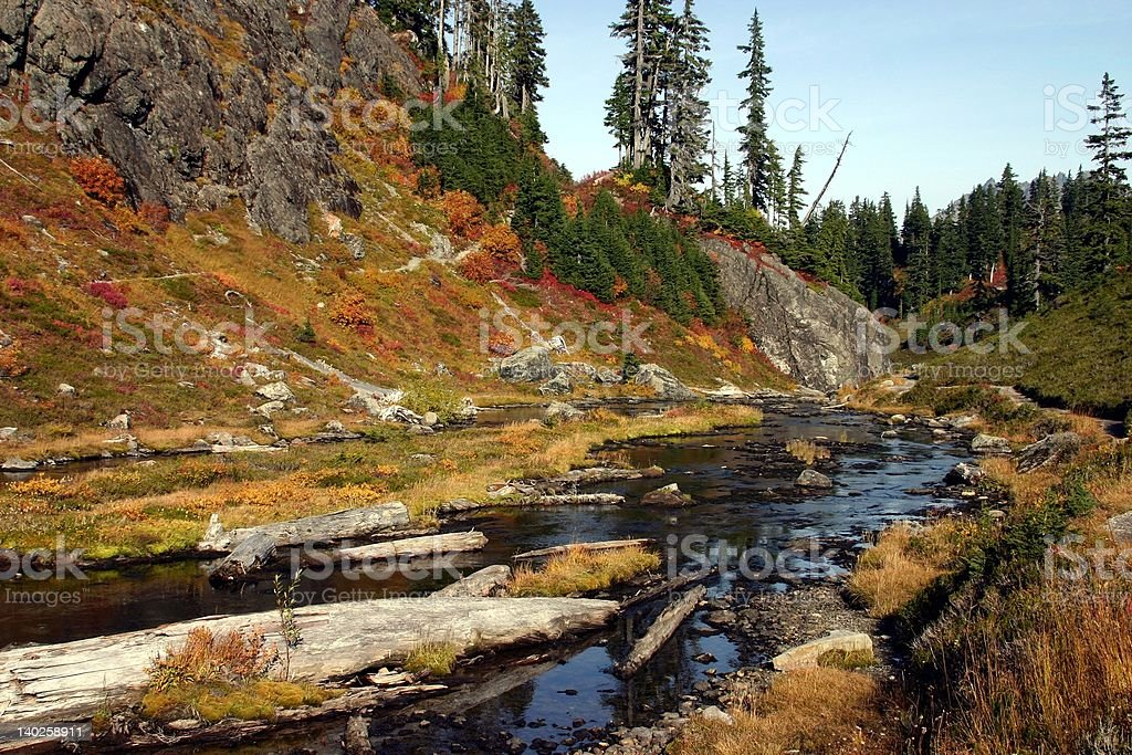 Fall Colors - Amazing! royalty-free stock photo