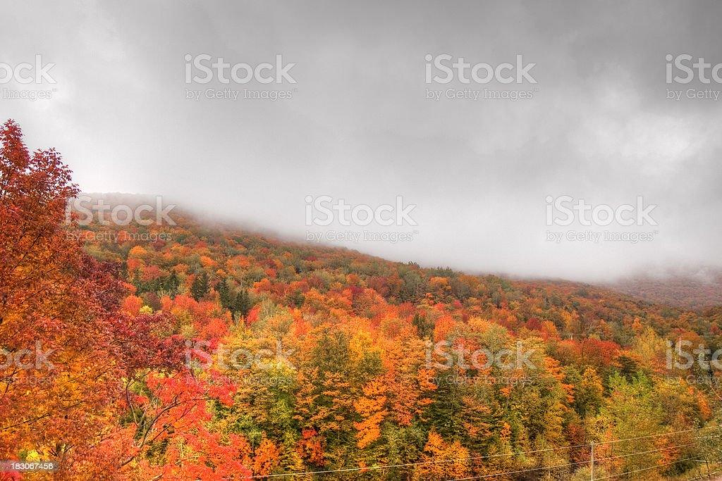 Fall Colors and Grey Skies royalty-free stock photo