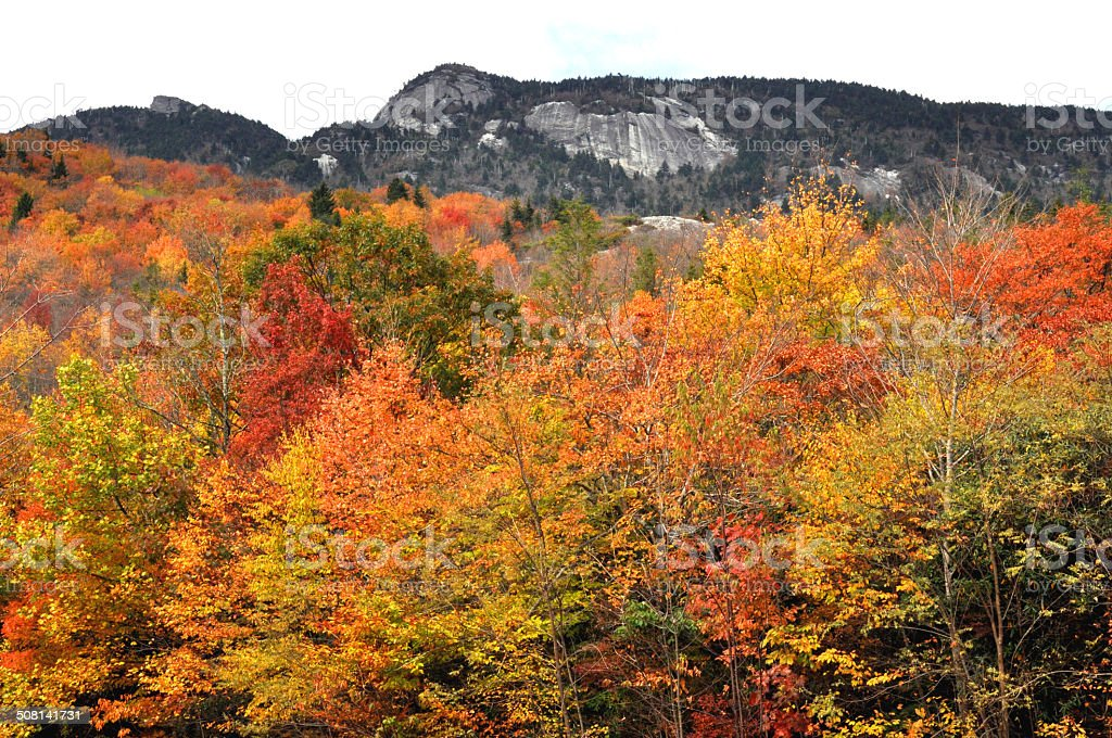 Fall colors and stone mountain on the Blueridge Parkway. stock photo