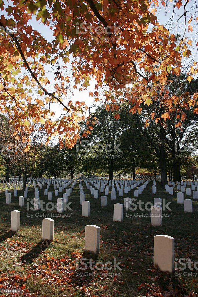 Fall Colors at Arlington National Cemetery royalty-free stock photo