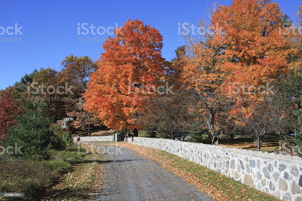 Fall Colors at their Best stock photo
