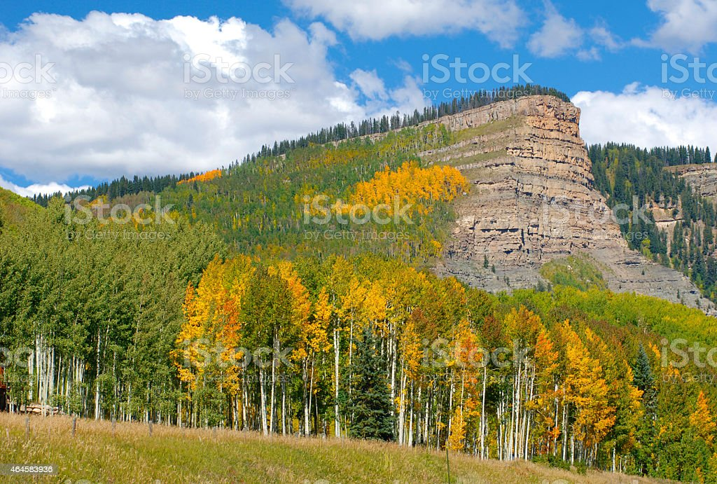 Fall Colors Delight on Trip Down Highway 550 in Colorado stock photo