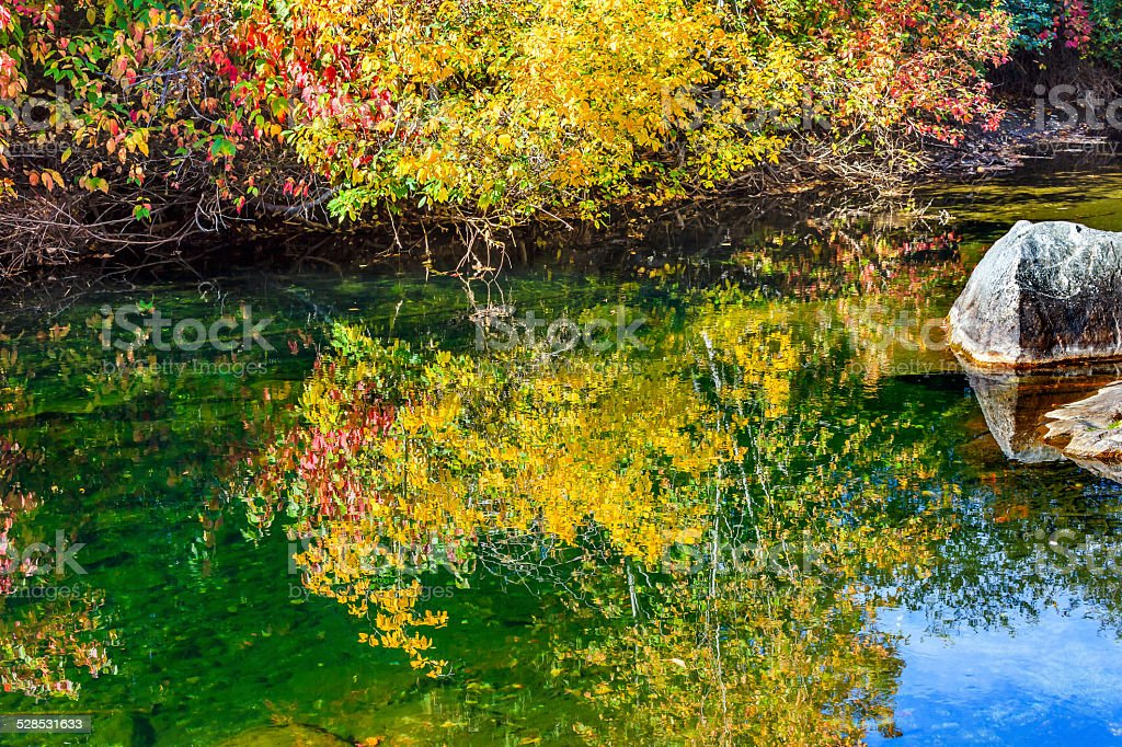 Fall Colors Green Water Reflection Abstract Wenatchee River Washington stock photo