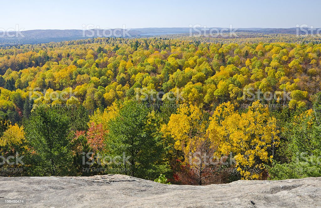 Fall Colors in Algonquin Park Ontario royalty-free stock photo