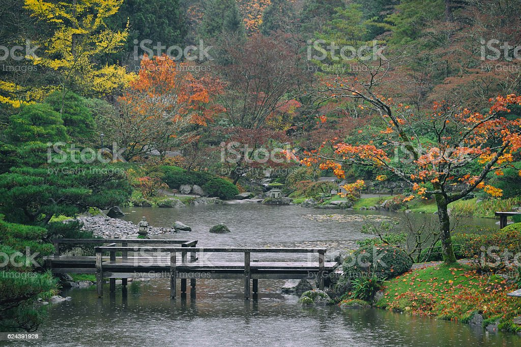 Fall Colors in Seattle Japanese Garden stock photo