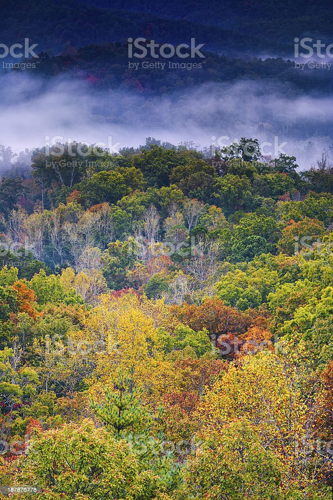 Fall Colors in the Smokies stock photo