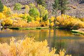 Fall Colors Lake