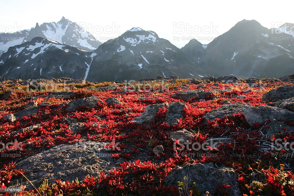 Fall colors, Mountains in the background stock photo