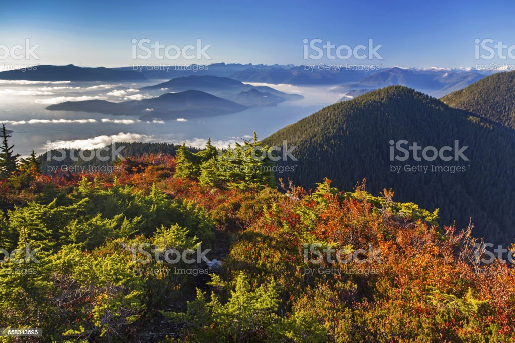 Fall Colors on Mount Strachan stock photo