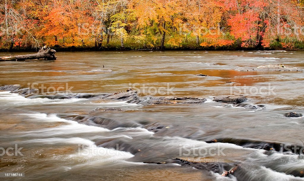 Fall Colors on the River royalty-free stock photo