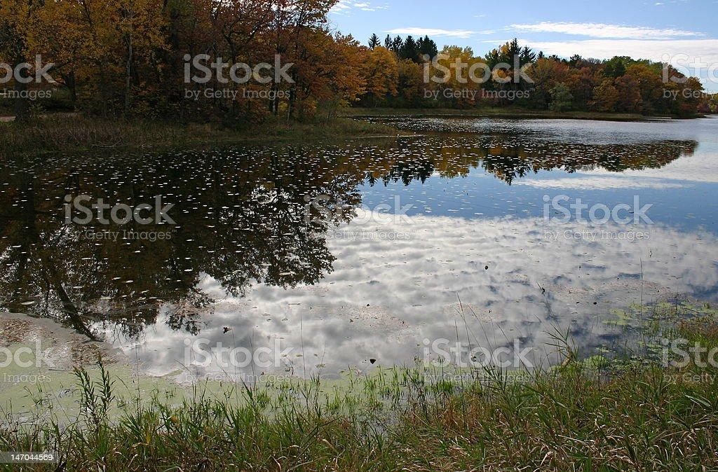 Los colores del otoño foto de stock libre de derechos