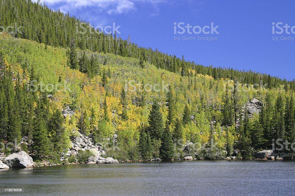 Colori autunnali foto stock royalty-free