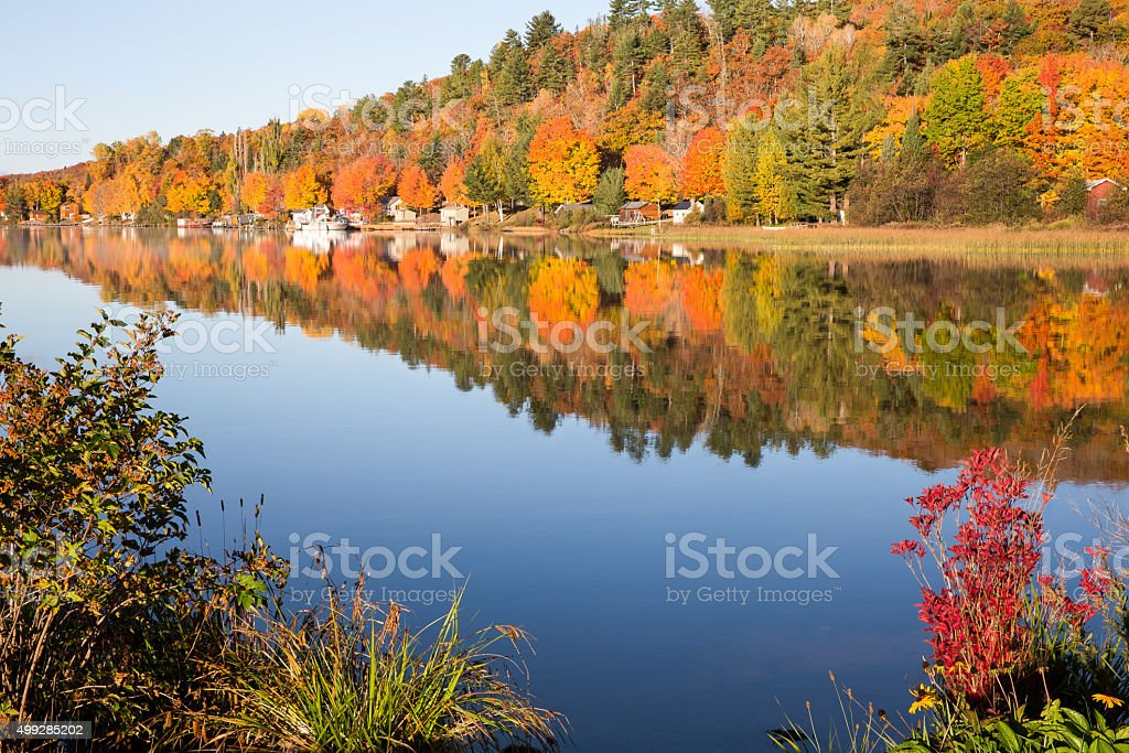 Fall Colors Reflected in Calm Lake with Foreground Bushes stock photo