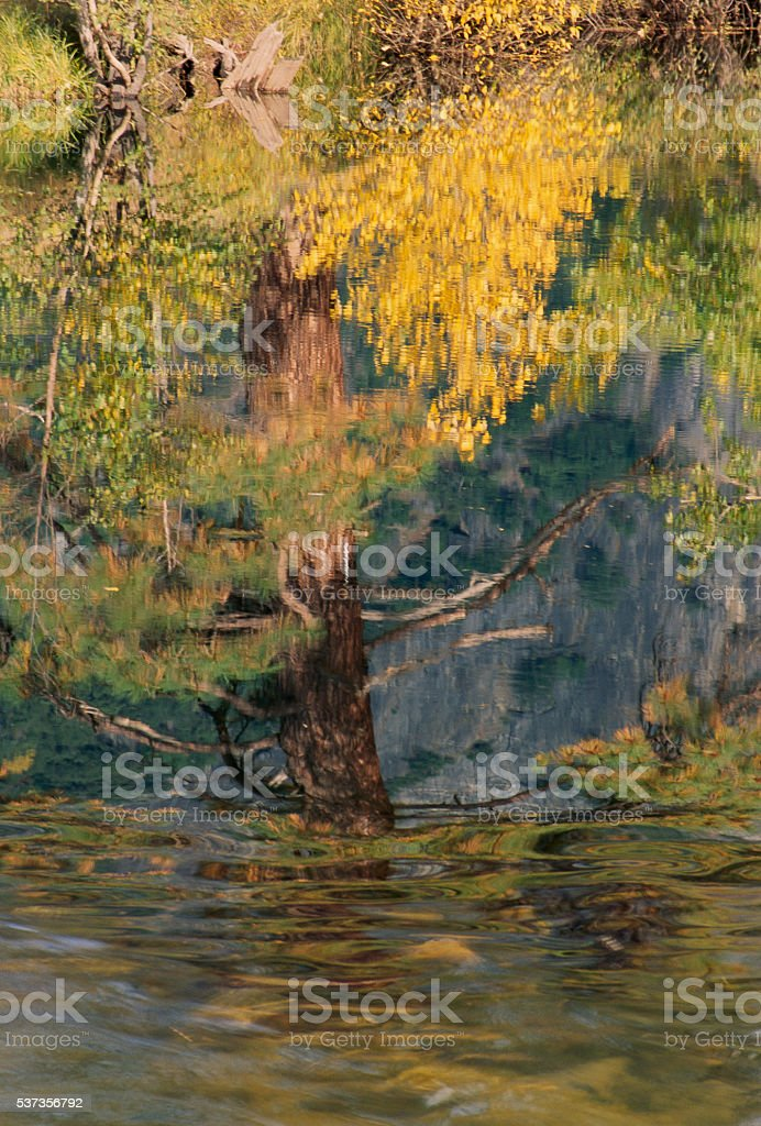 Fall colors reflection in Merced River stock photo