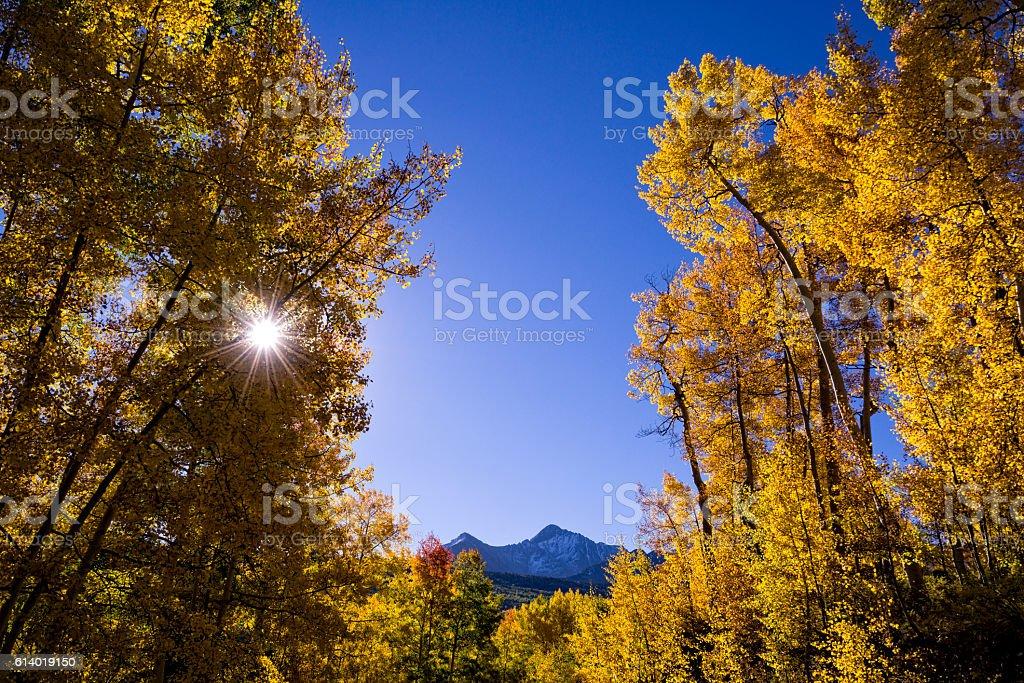 Fall Colors San Juan Mountains stock photo