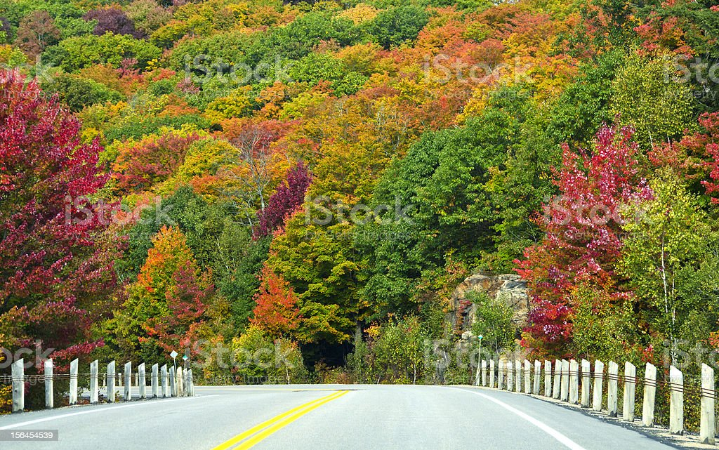 Fall Colors Seen on a Highway royalty-free stock photo