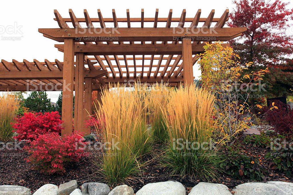 Fall Colors Under The Garden Pergola stock photo