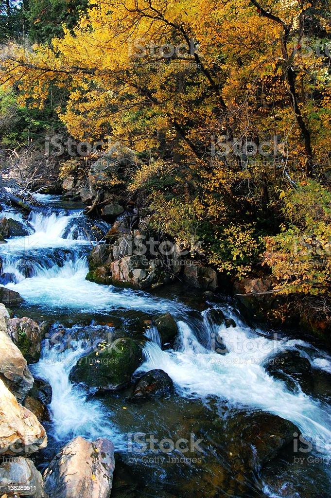 Fall colors, Utah royalty-free stock photo