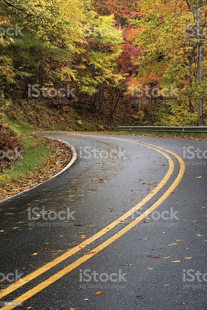 Fall Colors: Winding Mountain Road royalty-free stock photo