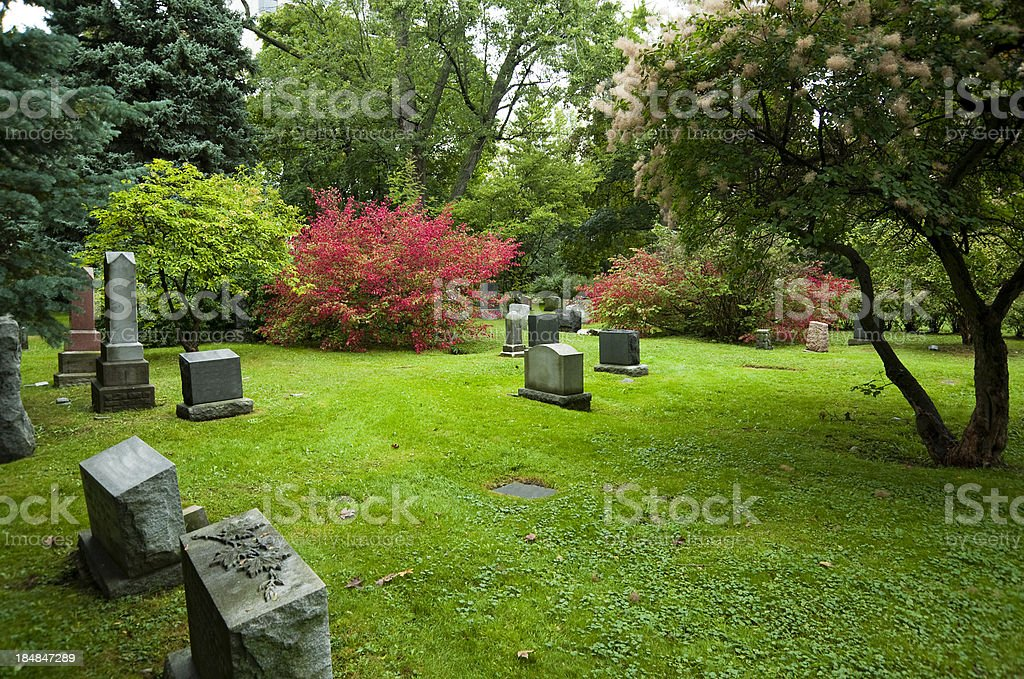 Fall Colour in Cemetery stock photo