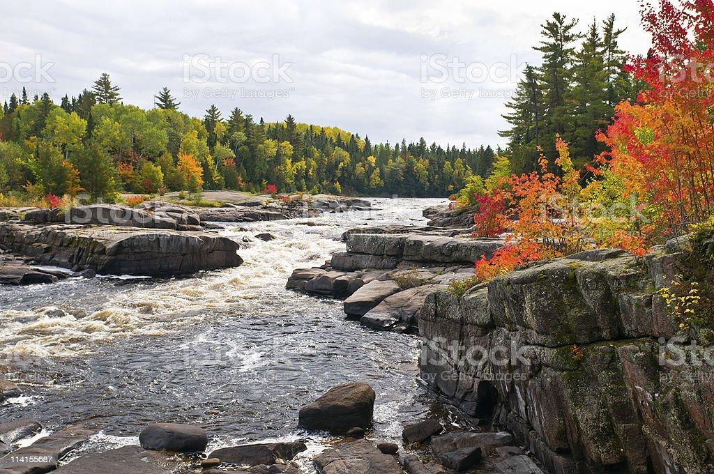 Fall colours stock photo