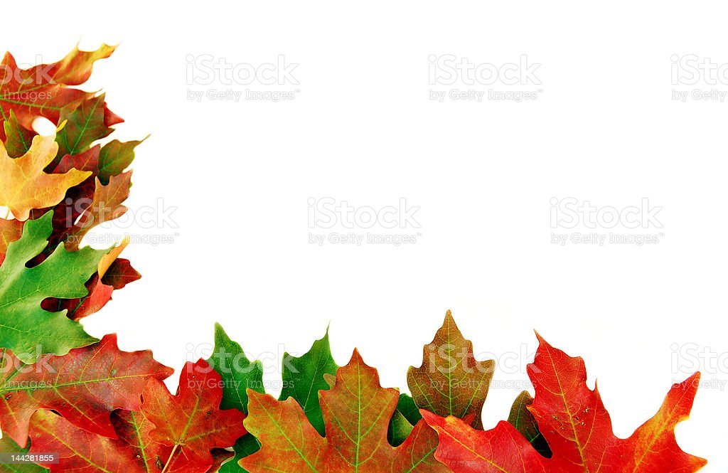Fall Corner royalty-free stock photo