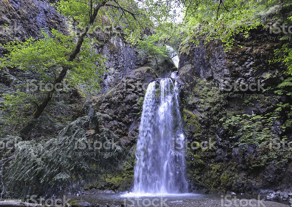 Fall Creek Falls, Oregon stock photo