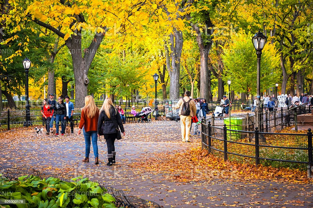Fall Day Central Park stock photo