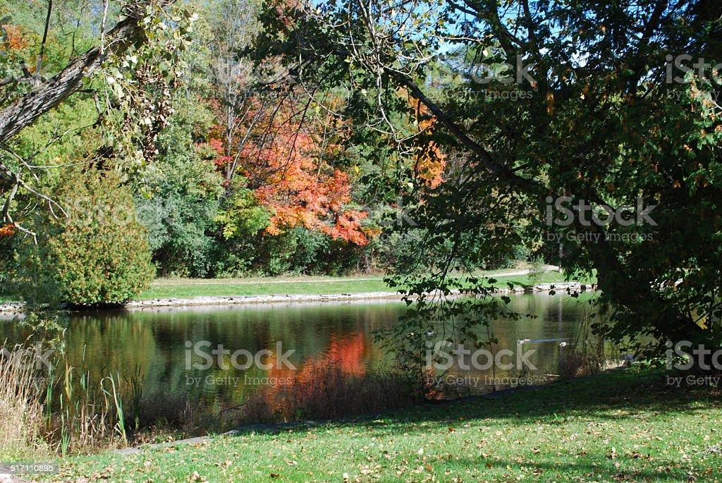 Fall day stock photo
