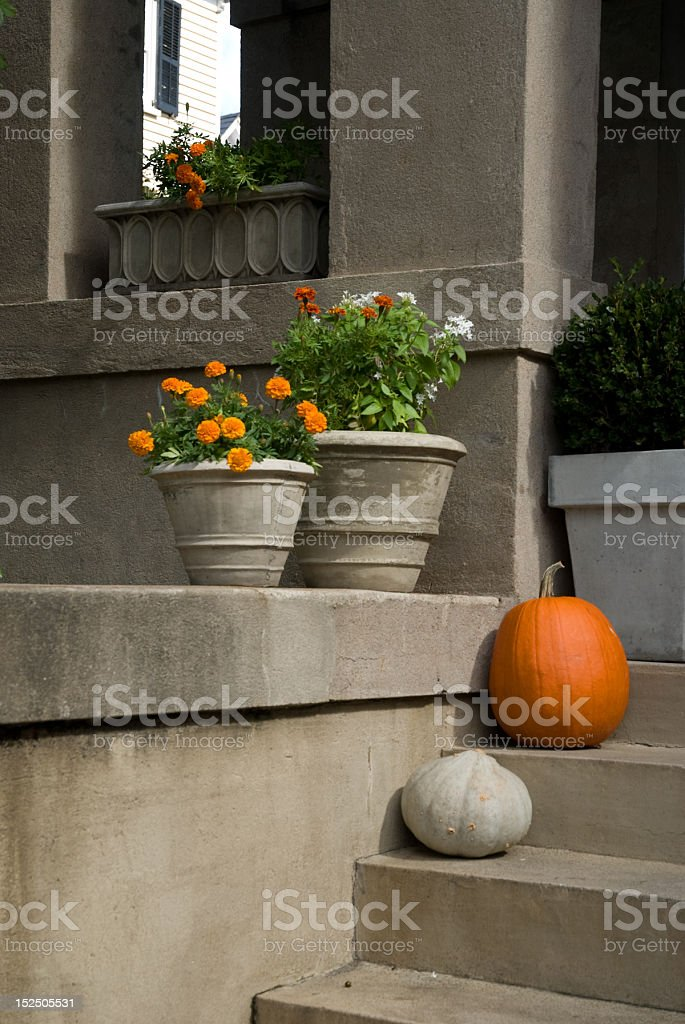 Fall Decorations in Charleston, SC royalty-free stock photo
