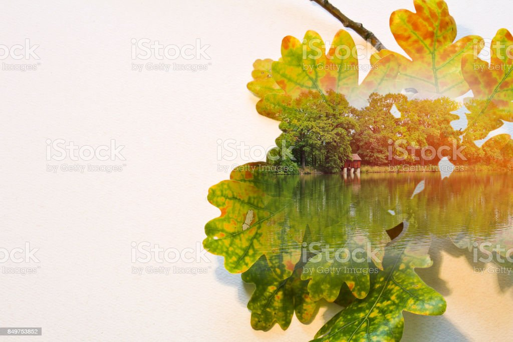 Fall double exposure in colorful leaves and pond stock photo