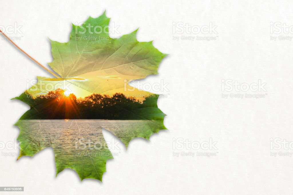 Fall double exposure in leaf and sunset on pond stock photo