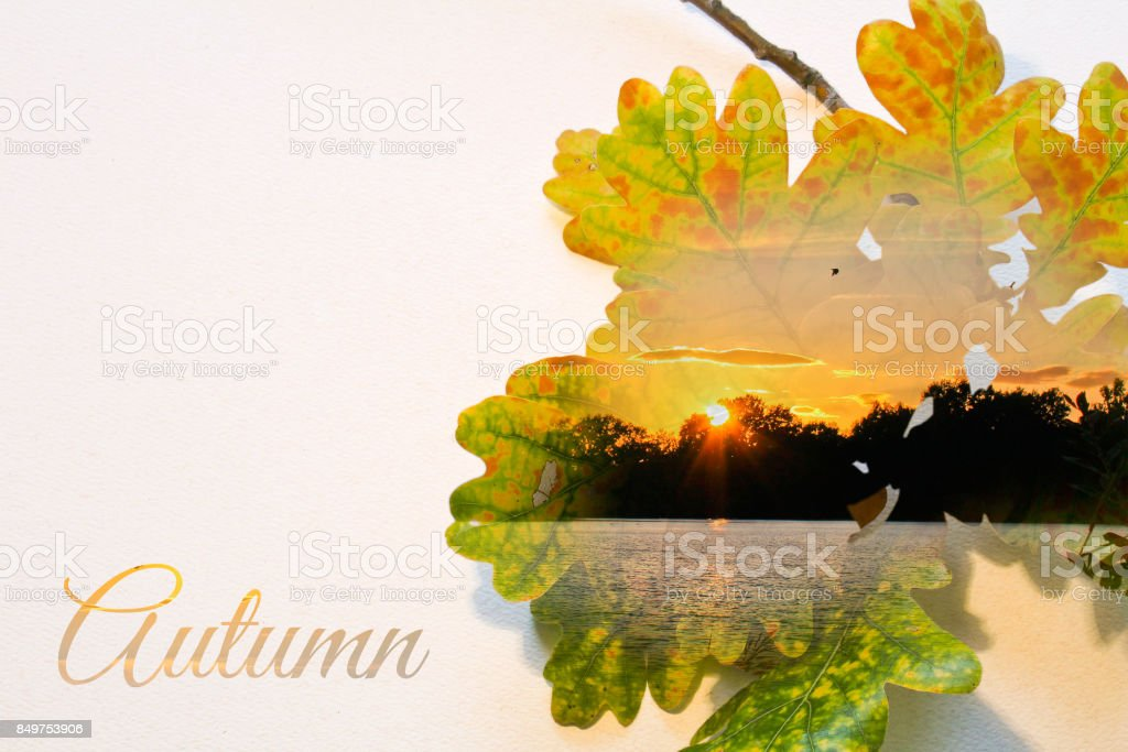 Fall double exposure in leaf and sunset with text stock photo