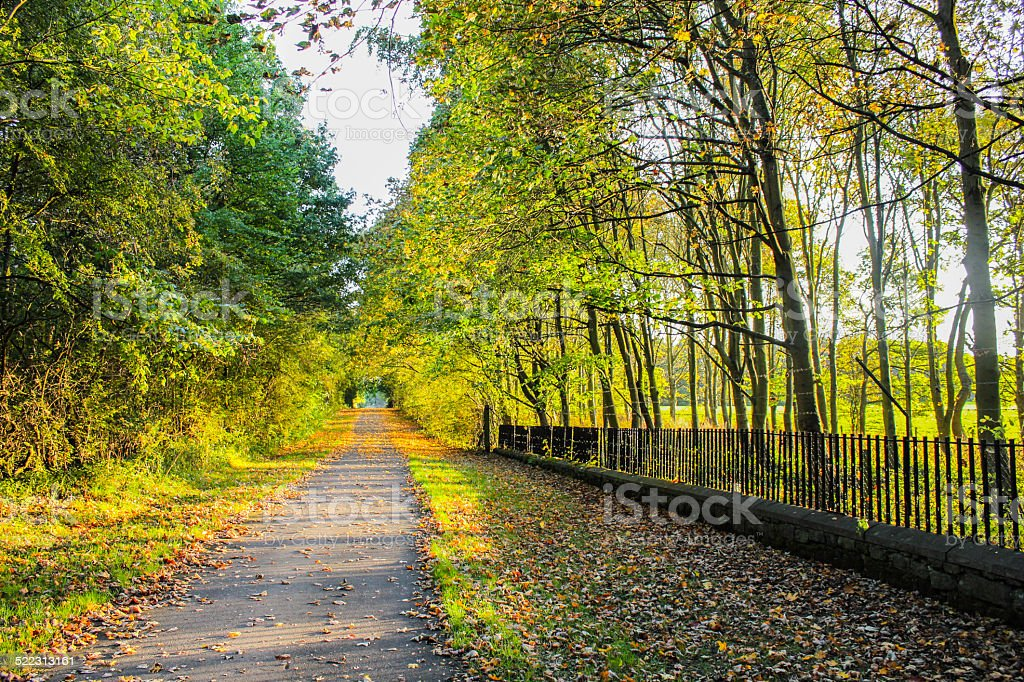 Fall Driveway royalty-free stock photo