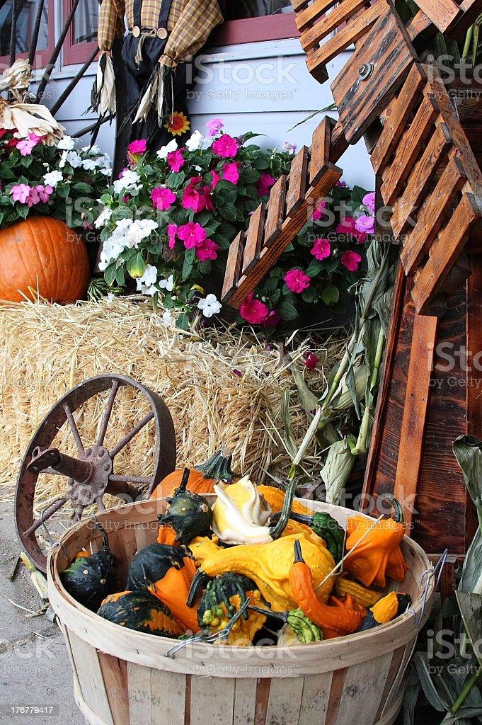 fall farmstand stock photo