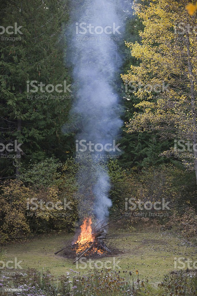Fall Fire and Column of Smoke royalty-free stock photo
