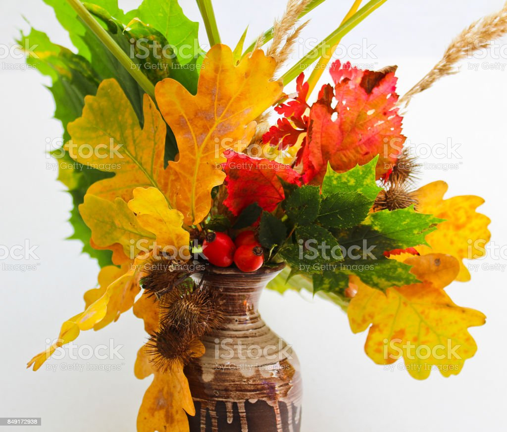 Fall flower in vase made from leaves brier and thistle stock photo