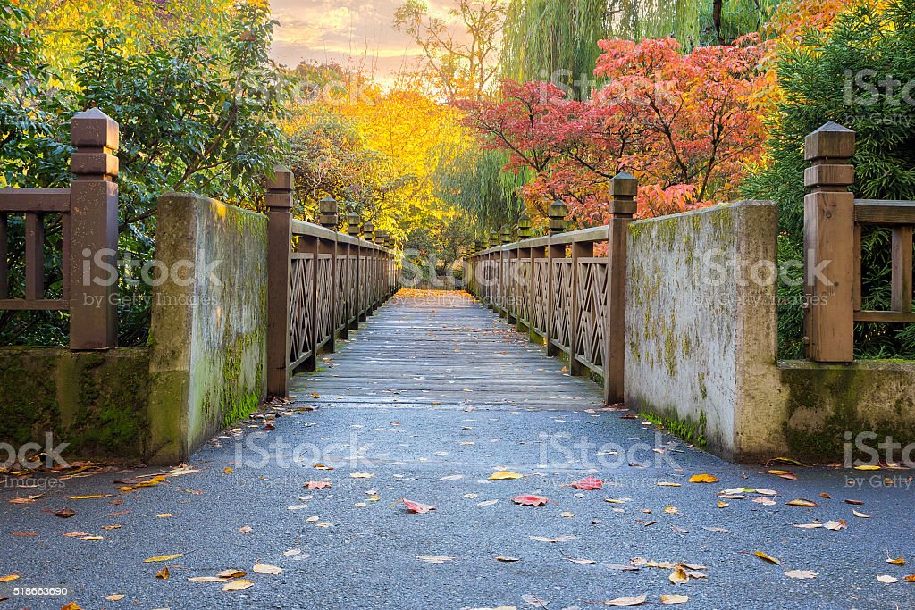 Fall Foliage at Crystal Springs Rhododendron Garden stock photo