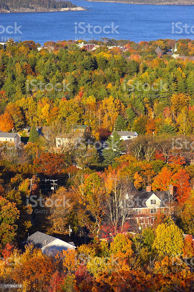 Fall foliage colors in Bar Harbor stock photo