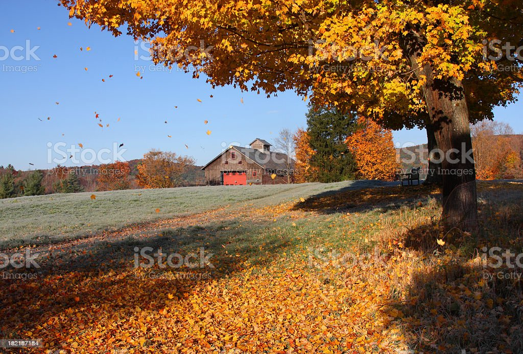 Fall Foliage in Connecticut stock photo