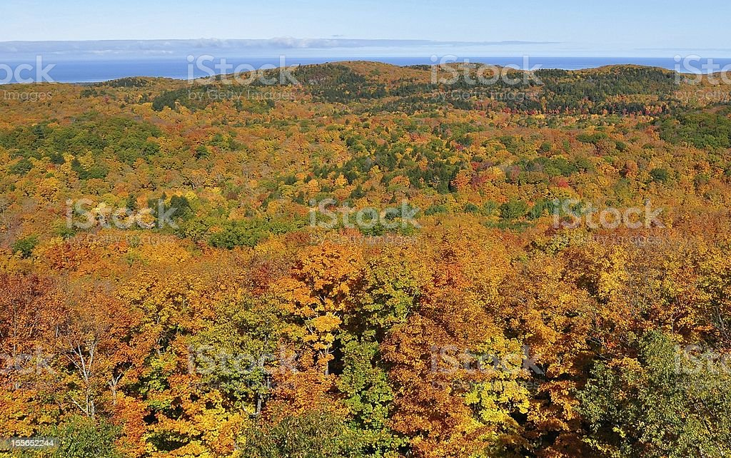 Fall Foliage in Mountains stock photo