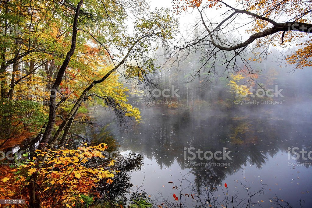 Fall Foliage  in New Hampshire stock photo