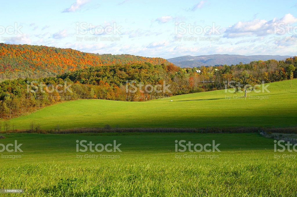 Fall Foliage in the Country royalty-free stock photo