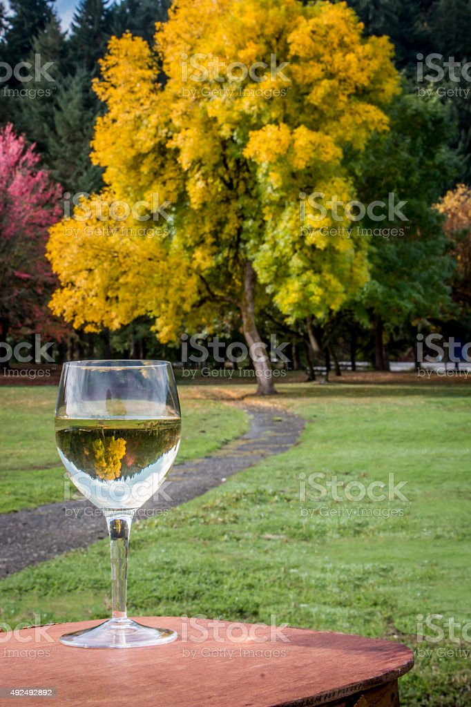 Fall Foliage Inverted inside Glass Chardonnay Wine on Picnic Basket stock photo